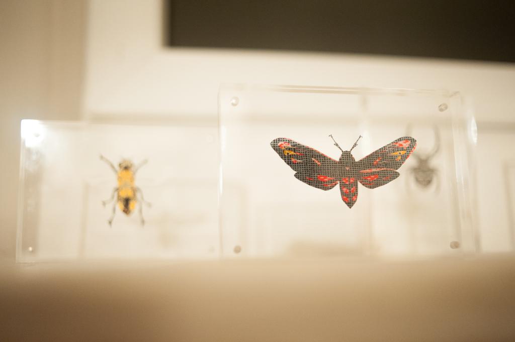 closer-gallery-botanicals-exhibition-01
