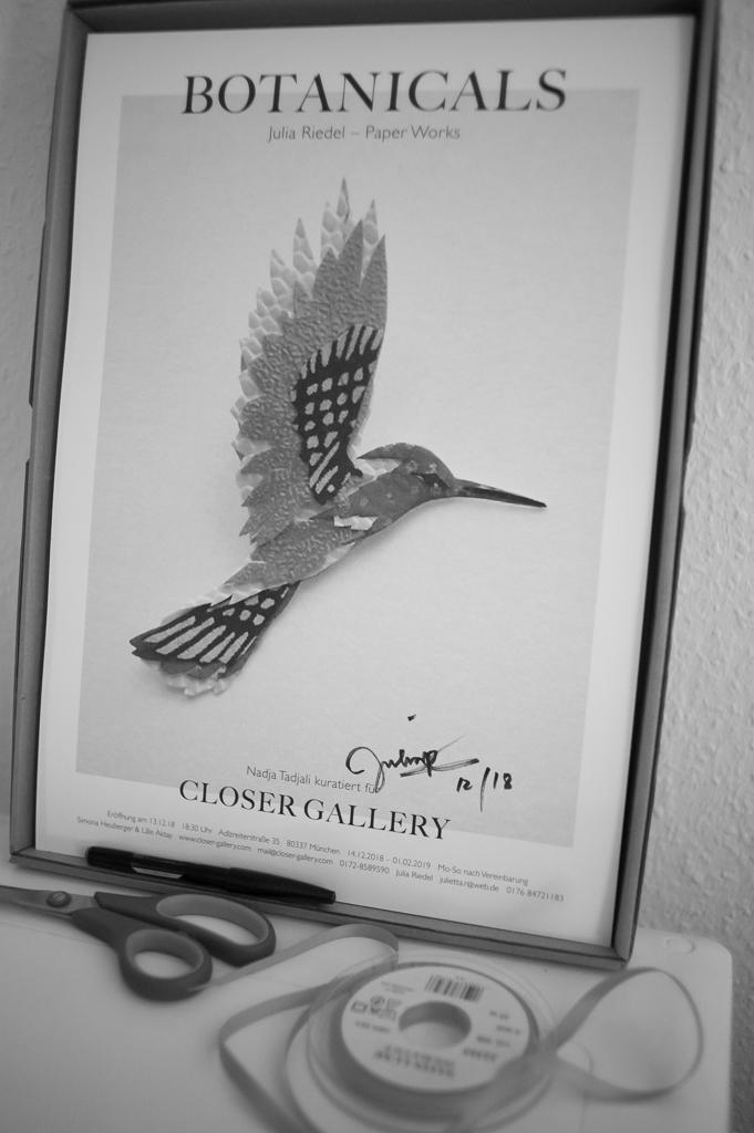 closer-gallery-botanicals-exhibition-06